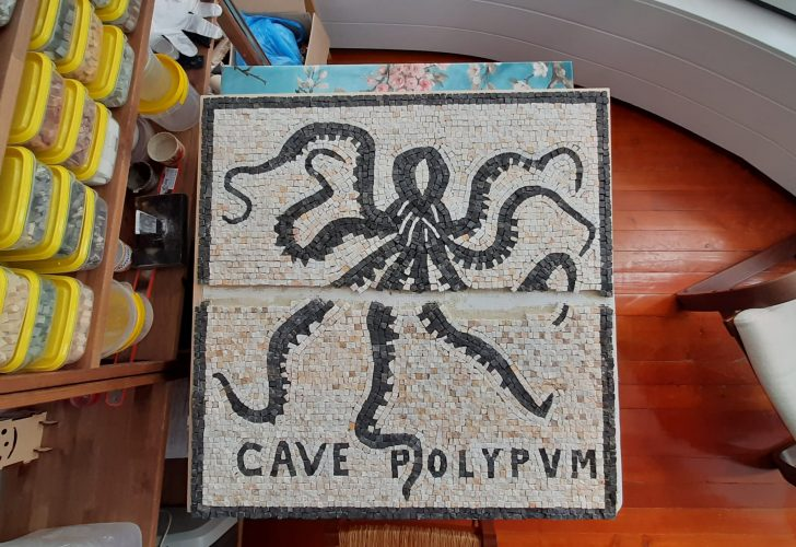 Осьминог. Копия мозаики из терм Геркуланума